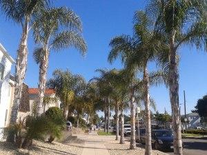 San Diego_Gerti2