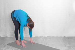 Mit den Händen auf dem Boden stehend, möglichst die ganzen Handflächen auflegen