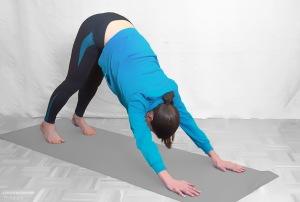 Die Hüfte heben und in die umgekehrte Position kommen. Dabei die Füße in den Boden drücken, so werden die Waden gedehnt. Arme sind durchgestreckt, Blick in Richtung Knie Nach einigen Sekunden wieder in die Ausgangsposition